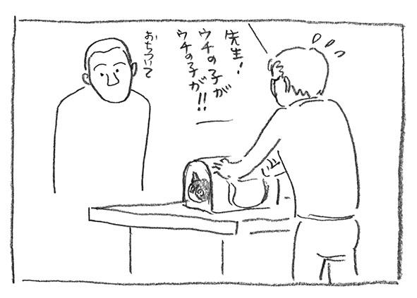 4-ウチの子