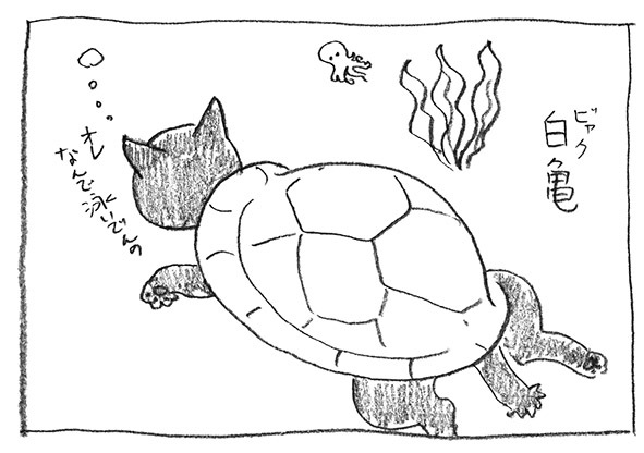 3-ビャク亀