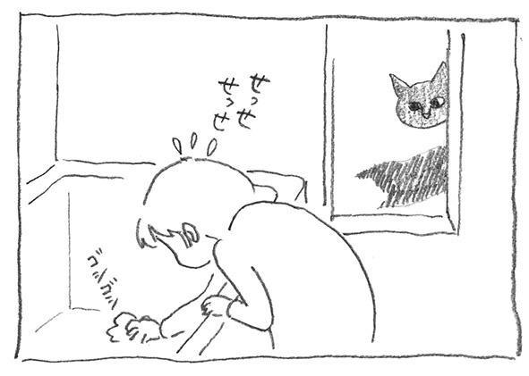 18-白決定