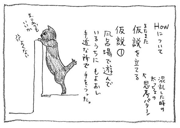 1-また仮説