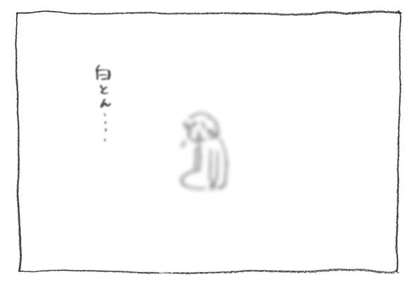 8-白とん