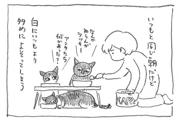 17-いつもの朝
