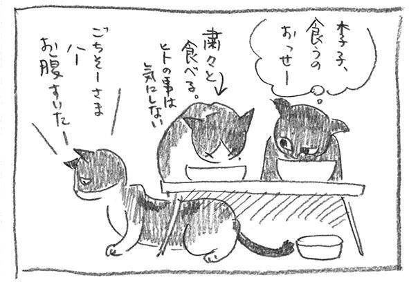 3-李子遅い