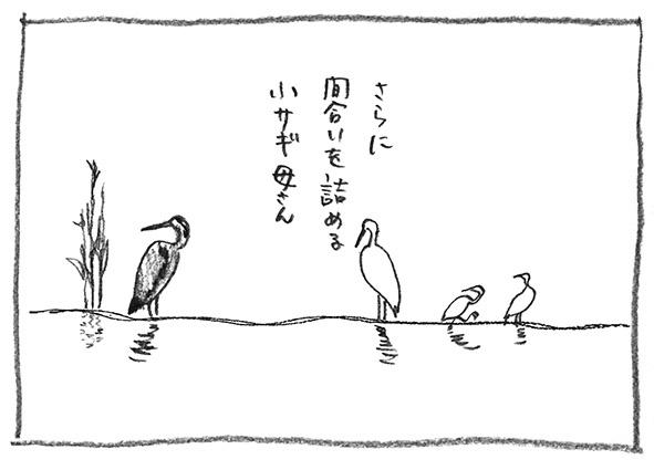 12-更に