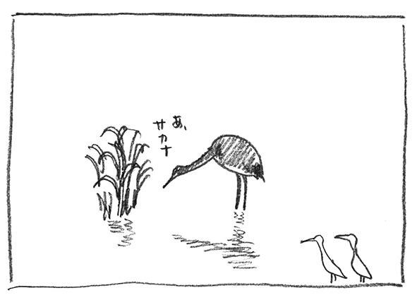 5-サカナ