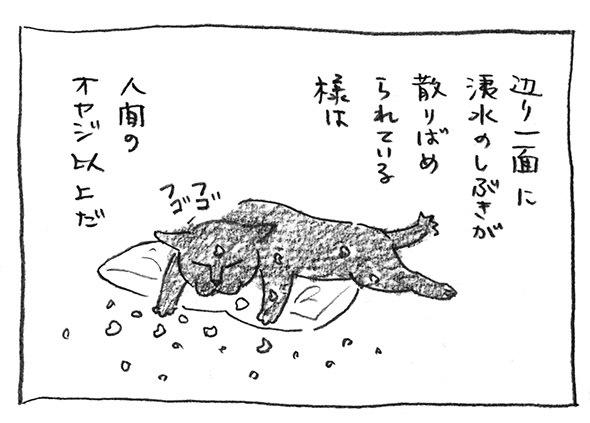 8-散りばめ