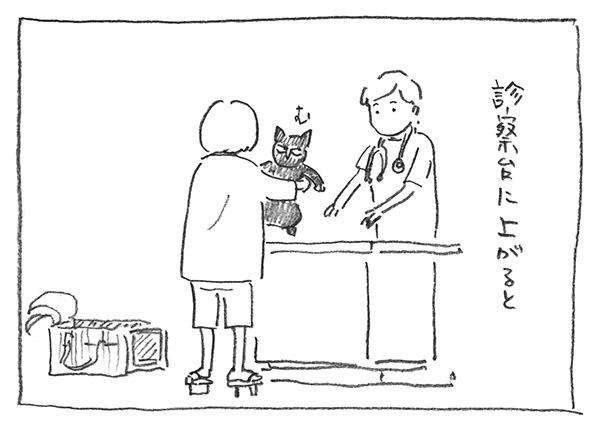 3-診察台