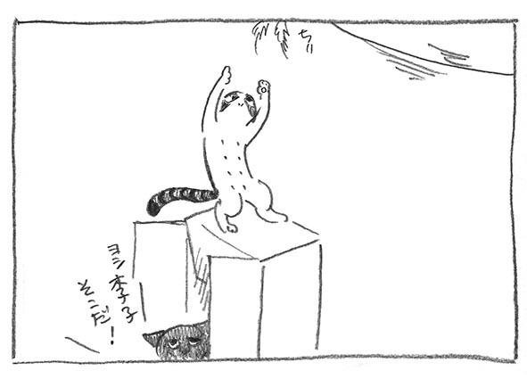6-李子箱に乗る