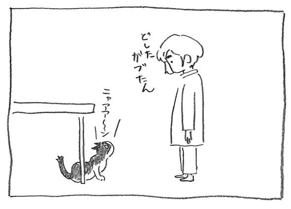 4-どした