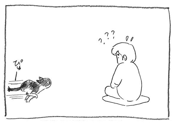 8-ガブピュー