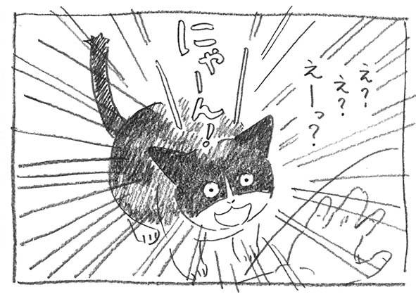 11-にゃーん!