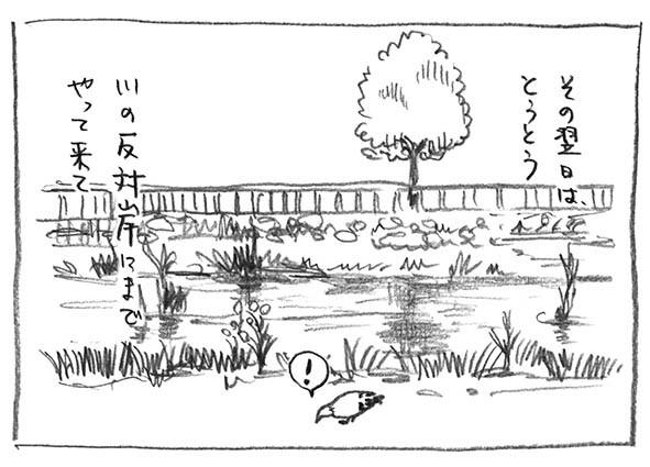 5-反対岸