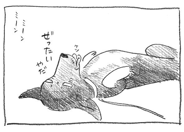 7-絶対ヤダ