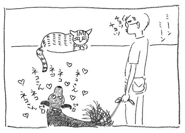 5-ネコさん