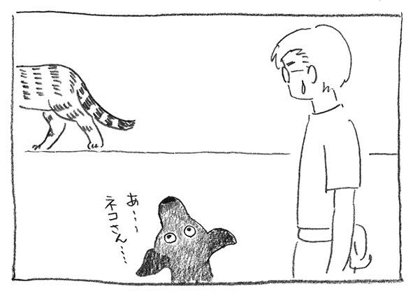 13-猫退場