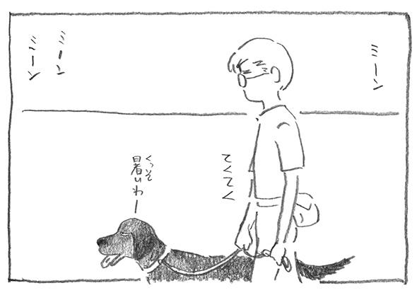 1-散歩続き