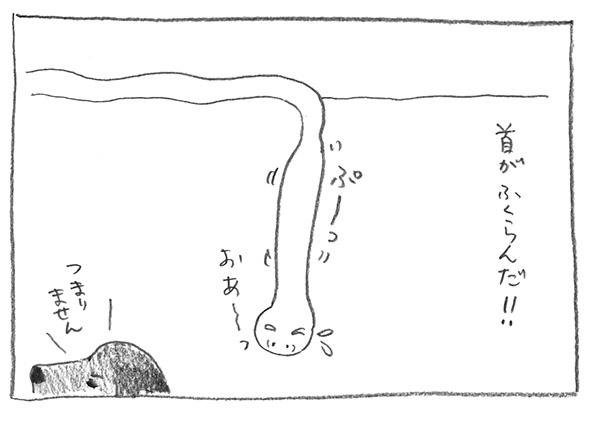 6-首膨らむ