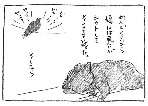 7-シカト寝