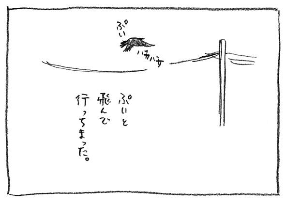 10-ぷい