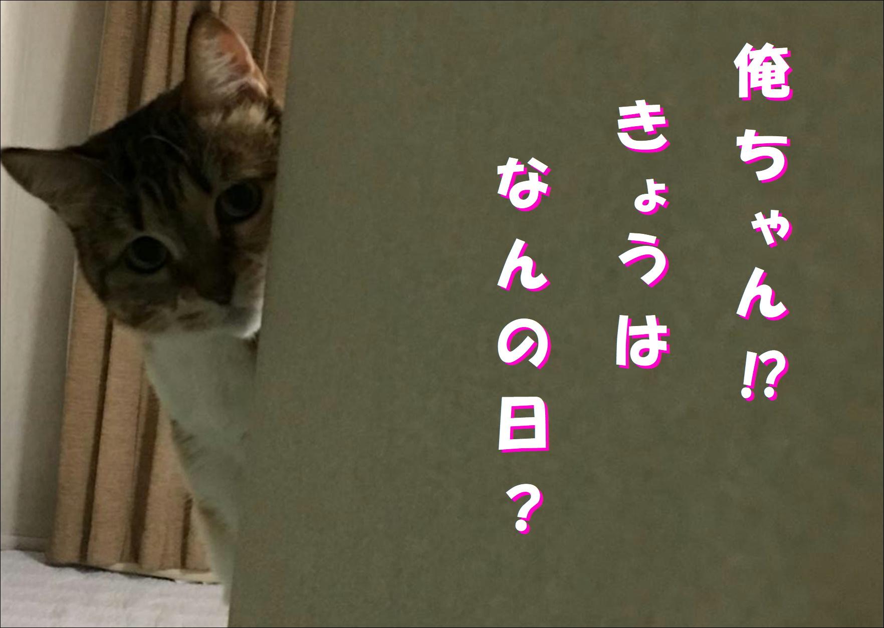 blog20180422_01.jpg