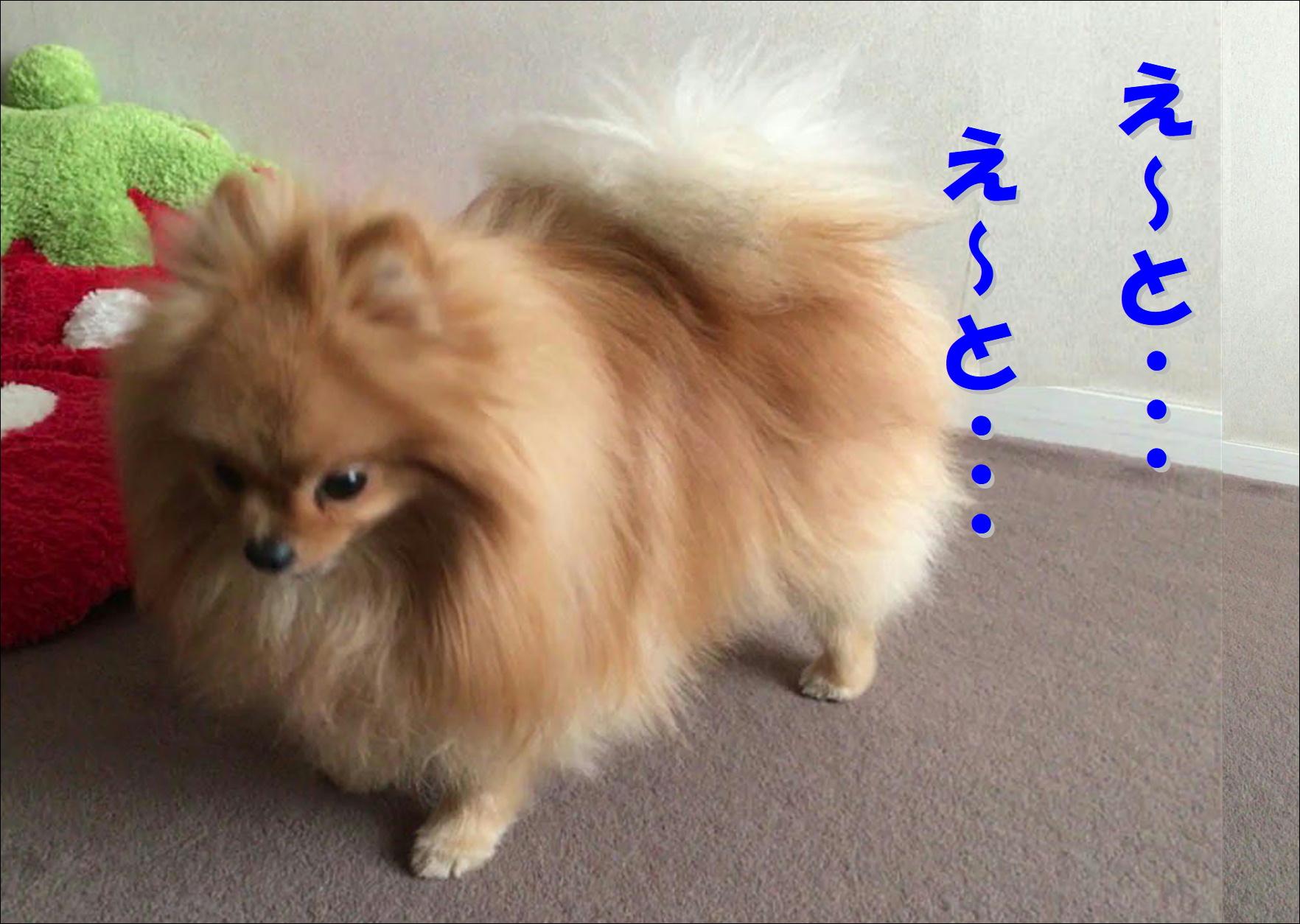 blog20180422_02.jpg