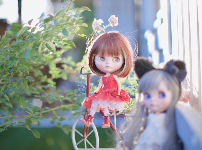 _MG_89632.jpg