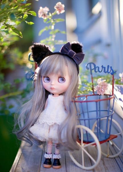 _MG_89983.jpg