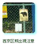 西京区熊出現注意