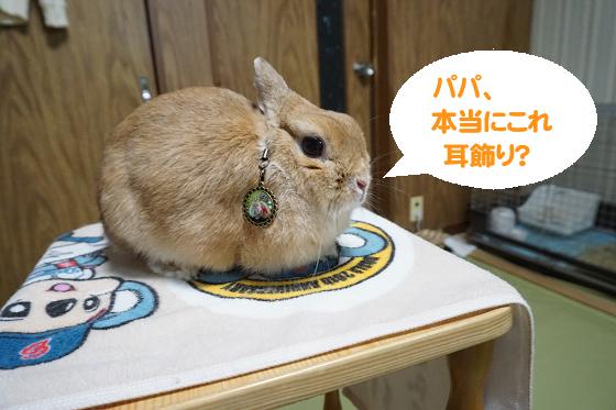 ぴょん子180830_0