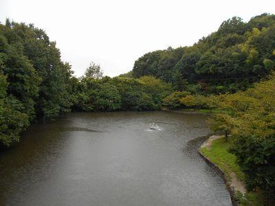 18_ふれあいの森公園_池