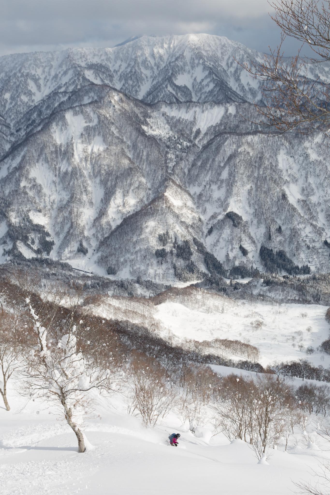 1月下旬 大渚山BC 5Dmk3