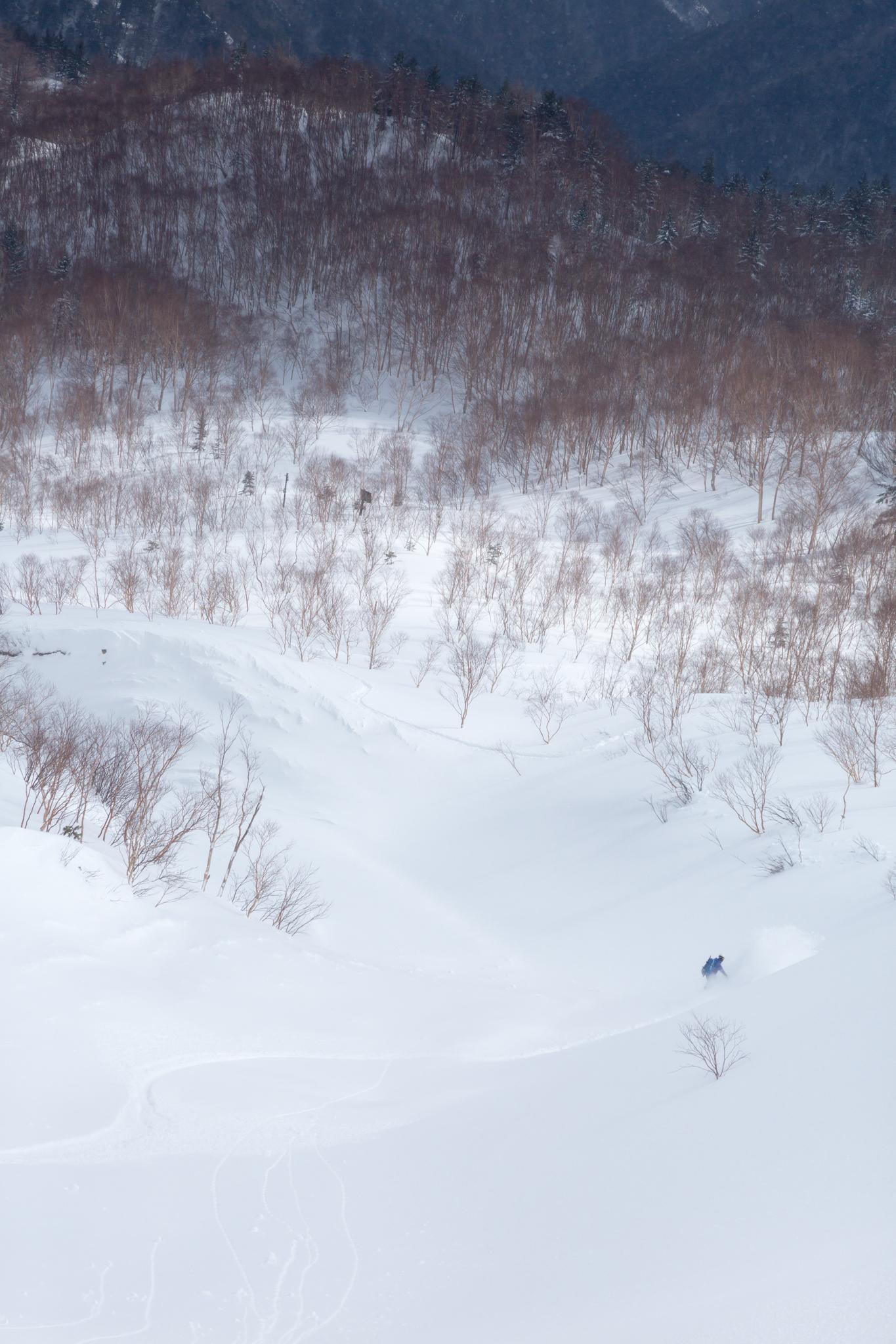 1月下旬 焼岳BC