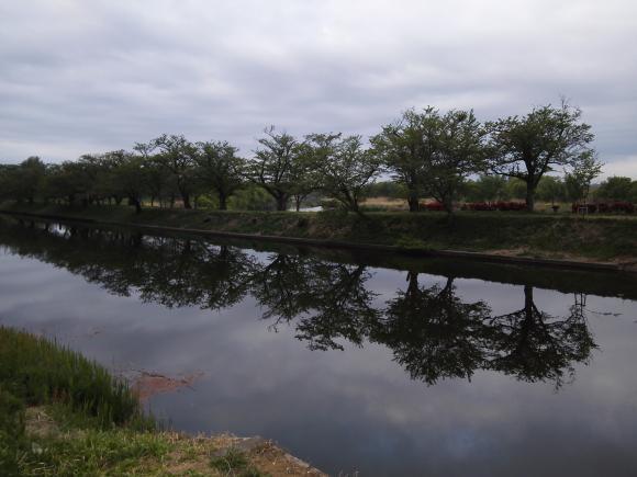 小貝川 釣り バス 鯉 2018 春