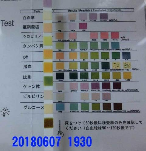 20180607-1930CIMG1582.jpg