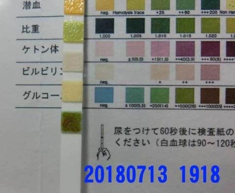 20180713-1918CIMG1920.jpg