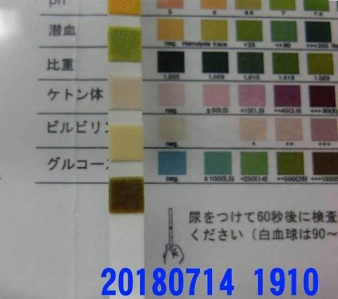 20180714-1910CIMG1927.jpg
