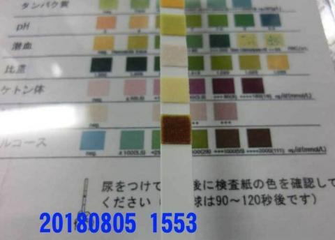 20180805-1553CIMG2182.jpg