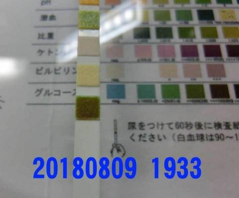 20180809-1933CIMG2264.jpg