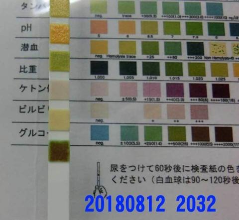 20180812-2032CIMG2304.jpg