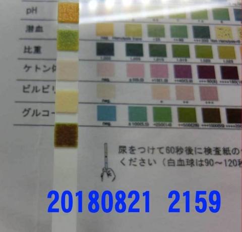 20180821-2159CIMG2431.jpg