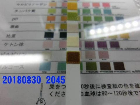 20180830-2045CIMG2512.jpg