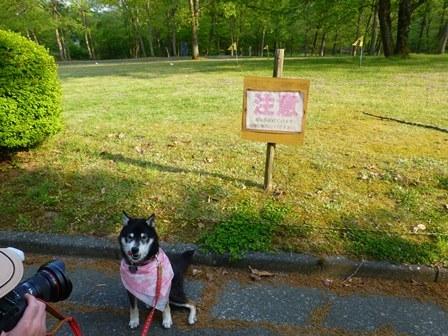 休暇村帝釈峡お散歩4