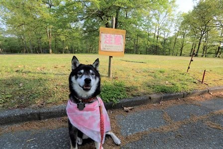 休暇村帝釈峡お散歩5
