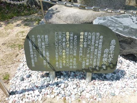 神龍湖櫻橋4