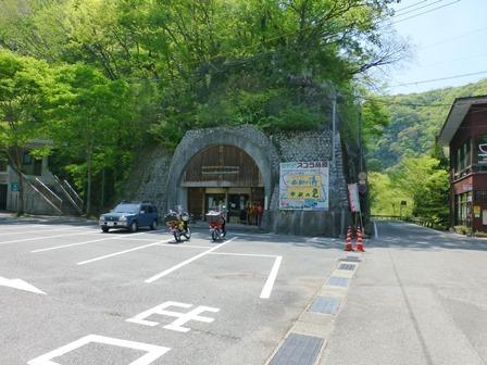 神龍湖櫻橋5