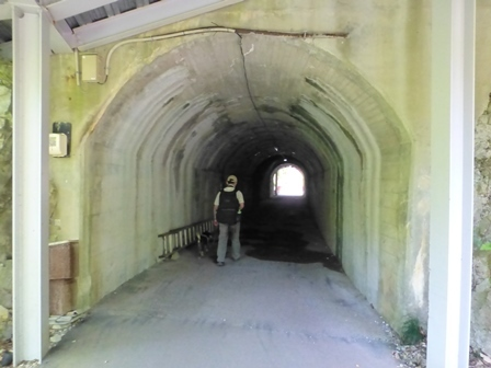 神龍湖櫻橋11