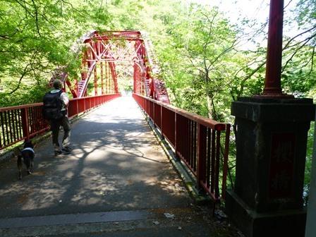神龍湖櫻橋16
