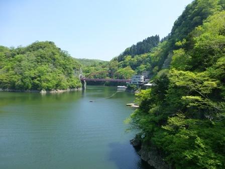 神龍湖櫻橋20