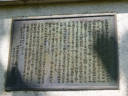 神龍湖櫻橋23
