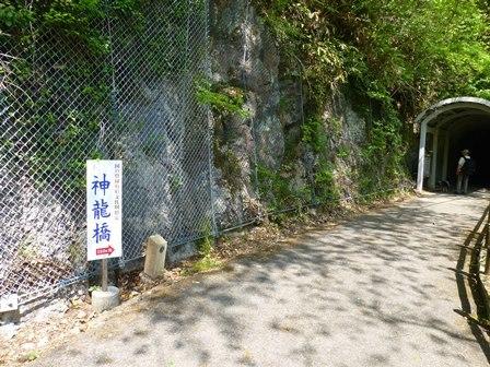 神龍湖櫻橋24